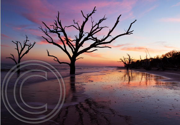 Botany Bay, Edisto Is, SC